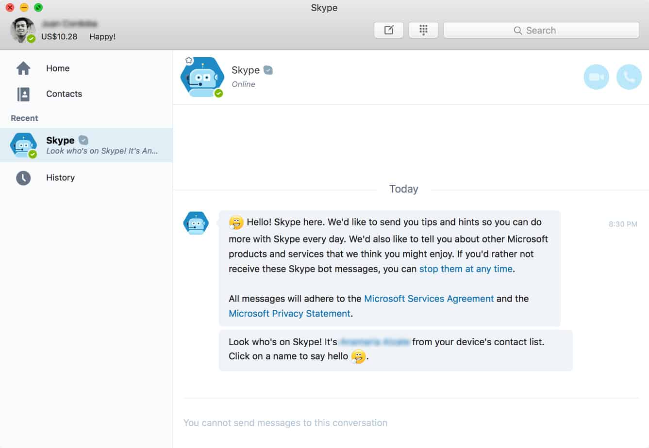 Skype Chatbot Screenshot